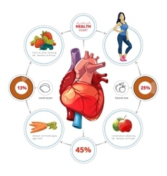 Heart medical infographics vector image vector image