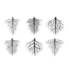 Black tree roots and green leaves vector