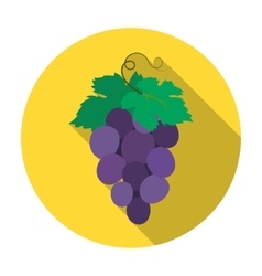 Bunch of wine grapes icon in flat style isolated vector
