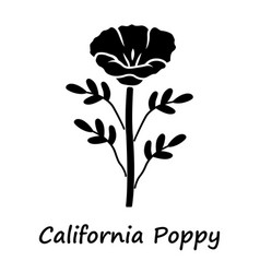 california poppy glyph icon papaver rhoeas vector image