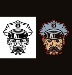 policeman in hat with mustache vector image