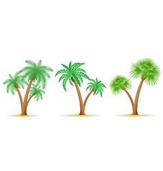 palm tree 26 vector image vector image