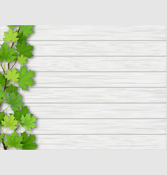 maple tree branch on wooden background vector image vector image