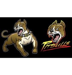 pitbull dog angry vector image