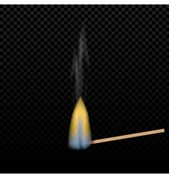 Realistic burning match on a gradient background vector image