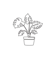 one continuous line drawing beauty potted vector image