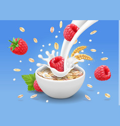 Porridge oats in bowl with raspberry vector