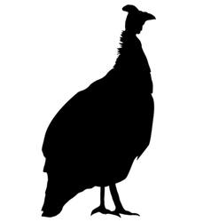 Silhouette of guinea fowl vector