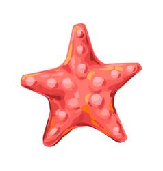 starfish tropical underwater sea vector image