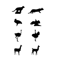 silhouettes of a South America vector image vector image