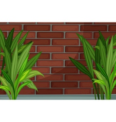 bricks vector image