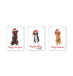 christmas card set with santa dogs isolated on vector image