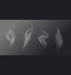 fluid cigarette smoke on a dark background vector image