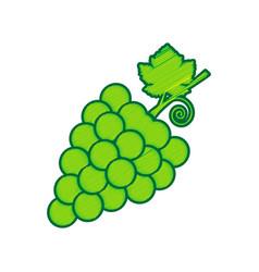 grapes sign lemon scribble vector image