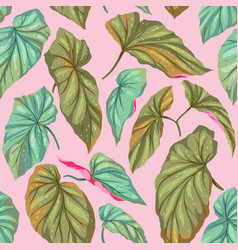 green leaves on a pink background vector image