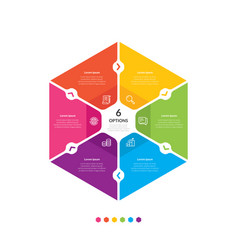 hexagon chart infographic template with 6 options vector image