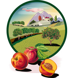 Oval frame with fishing and orchard vector