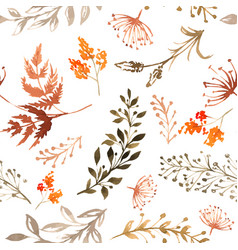 seamless drawn pattern hand drawn herbs vector image