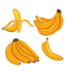 set bananas isolated on a white background vector image