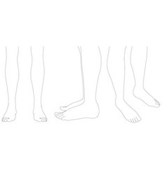 Set with contours of human legs feet with vector