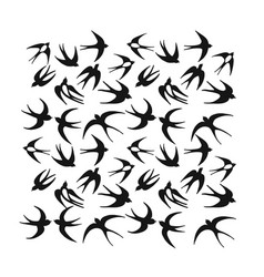 swallows background for your design vector image