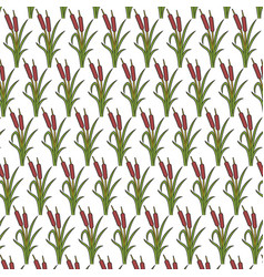 Background pattern with reeds vector