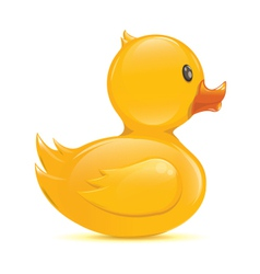 Rubber duck vector image
