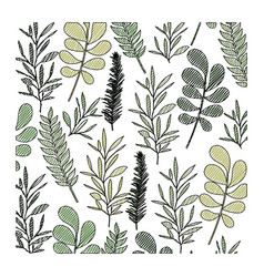 pattern leaves of plants on color crayon vector image