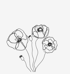 abstract outline flowers on white vector image