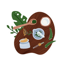 Flat lay natural cosmetics ingredients - plants vector