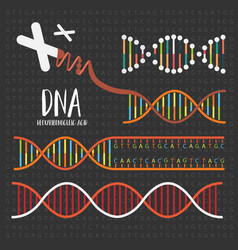 Genetics dna structure vector