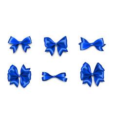 holiday satin gift bow knot ribbon man blue vector image
