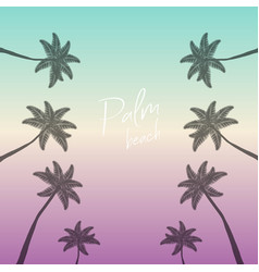 palm beach palms background palm trees with text vector image