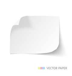 Paper banner with curl corners vector image