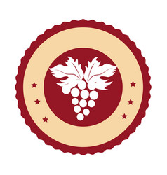 circular emblem with bunch of grapes vector image