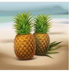 Pineapples on seaside vector