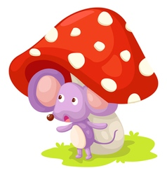 rat with mushroom vector image