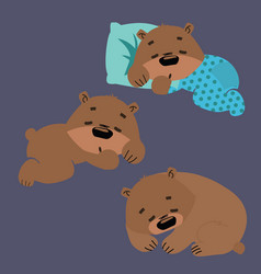 set of sleeping grizzly bears collection of vector image