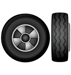 tyres vector image