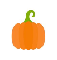 simple pumpkin vector image