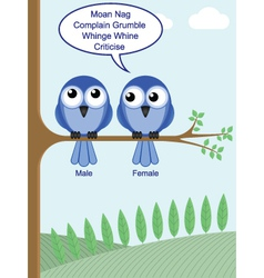 gender of birds vector image vector image