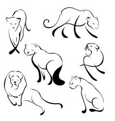 Lion design set vector