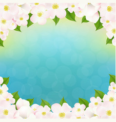 spring apple tree flowers border vector image vector image