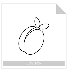 Apricot peach Flat linear icon of fruit vector image