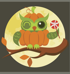Cartoon halloween orange pumpkin owl flat poster vector
