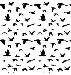Flock of doves seamless pattern vector