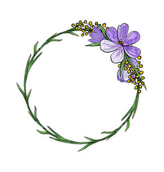 wreath with crocuses and mimosa vector image