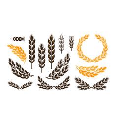 Ear wheat bread logo or label harvest bakery vector