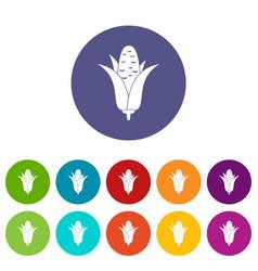 corncob set icons vector image