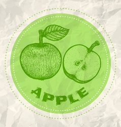 Apple vintage paper vector